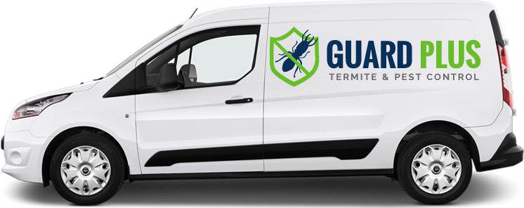 Guard Plus Logo